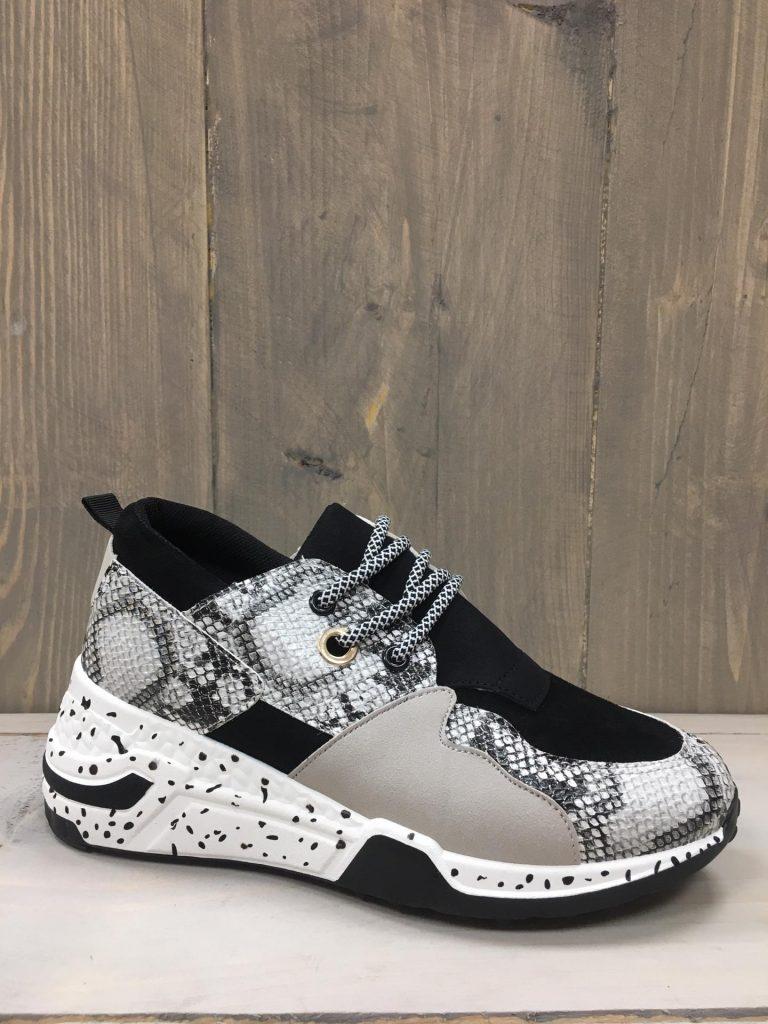 Snake grey sneaker