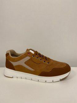 Sneaker Walter